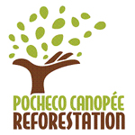 Pocheco Canopee reforestation